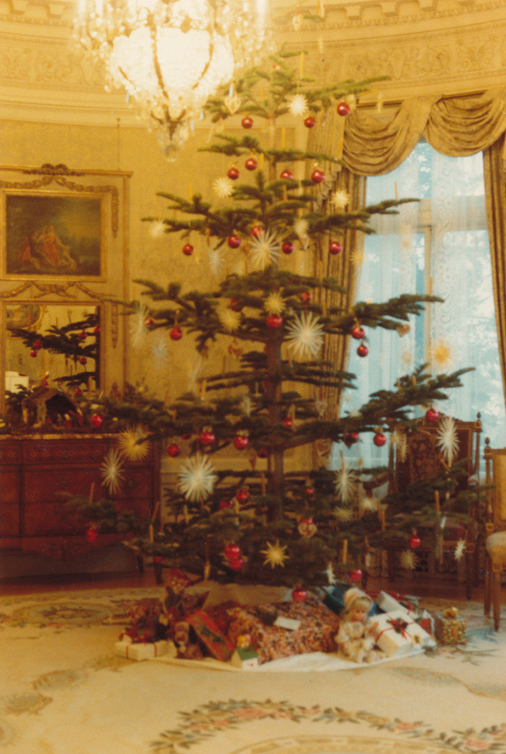 1983 - Tree in the Music Room in 1983