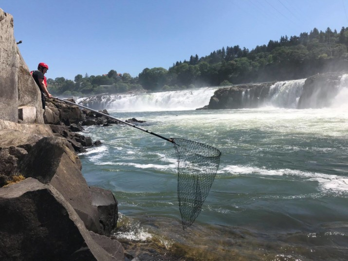 Confederated Tribes of the Grand Ronde Rework Plans for Willamette Falls Riverwalk
