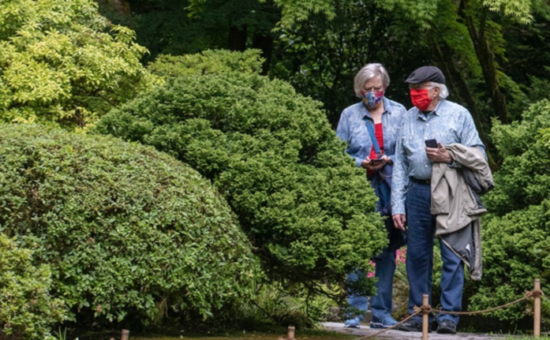 Portland Japanese Garden Reopens to Public
